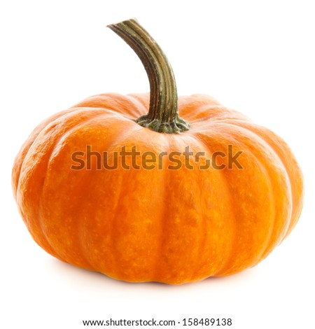 Beautiful pumpkin isolated on white background