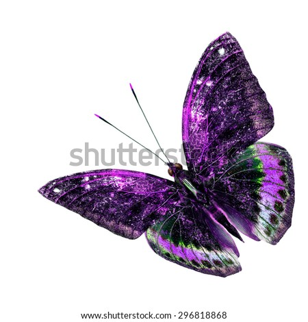Beautiful purple and green flying butterfly isolated on white background - stock photo