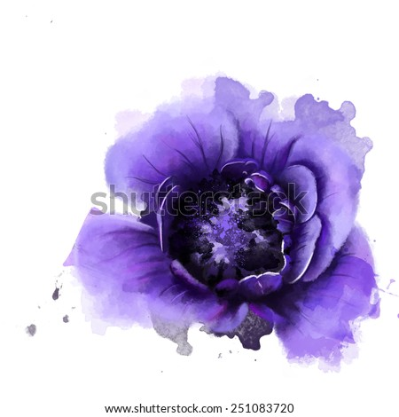 Beautiful purple anemones, Watercolor, painting - stock photo