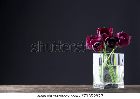 Beautiful purple tulips in glass vase on black background