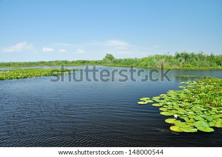 Beautiful quiet water channel with swamp vegetation in the Danube Delta, Romania. The second largest river delta in Europe, after the delta of Volga, is part Unesco World Heritage Site from 1991 - stock photo