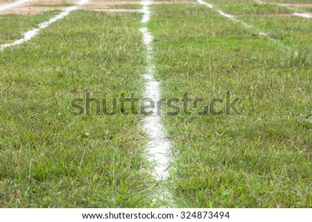 beautiful race track with white line for running sport, lifestyle - stock photo
