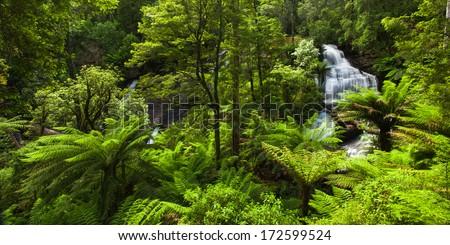 Beautiful Rainforest with Waterfall - stock photo