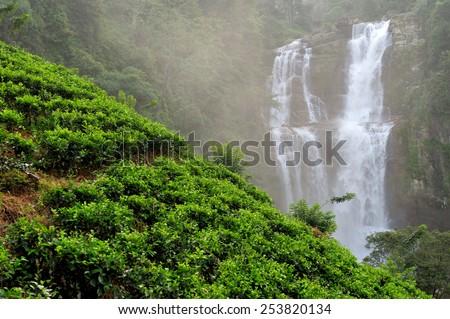 Beautiful Ramboda waterfall in Sri Lanka - stock photo
