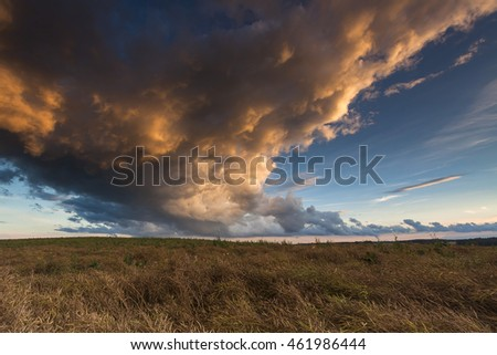 Beautiful rape field with storm clouds and sunset