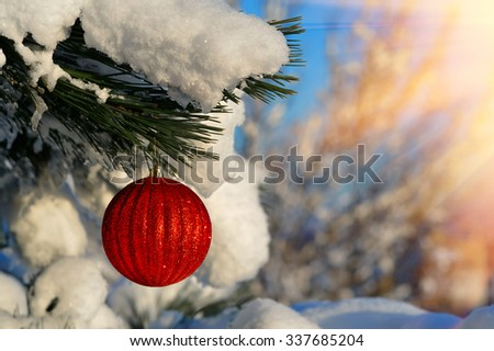 Beautiful Red Christmas Ball on the Fir Branch Covered with Snow. Christmas Background