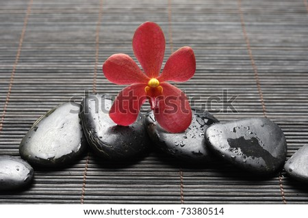 Beautiful red orchid and zen Stones - stock photo