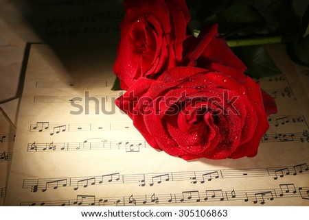 Beautiful red roses on music sheets, closeup