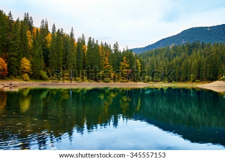 Beautiful reflection of trees in the mountain forest lake