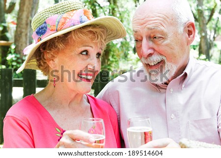 Beautiful retired senior couple toasting each other with champagne in an outdoor setting.   - stock photo
