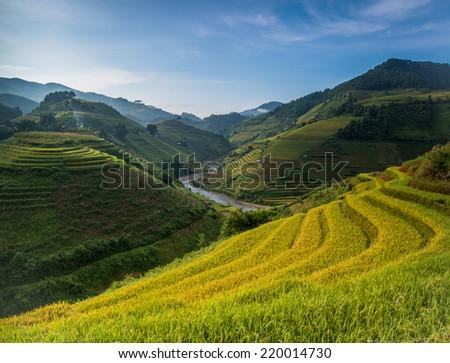 Beautiful Rice Terraces, South East Asia - stock photo