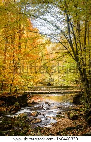 Beautiful river with cascades in autumn forest.Deutschlandsberg,Austria. - stock photo