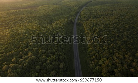Forest Ariel Road Desktop