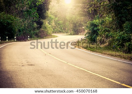 Beautiful road in forest - stock photo
