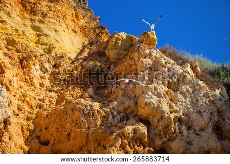 beautiful rock formations on the coast Atlantic Ocean, the province of Algarve, Portugal - stock photo