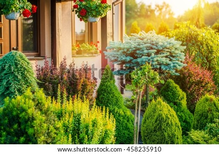 Beautiful Rockery Garden in Front of House. Summer Vegetation in the Residential Garden. - stock photo