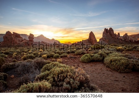 Beautiful rocky landscape with green bushes in Teide park on Tenerife island on the sunset - stock photo