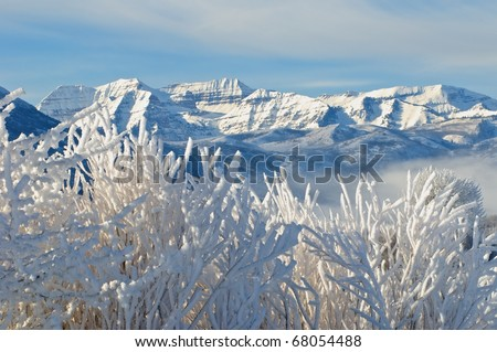 Beautiful rocky Mountains and sage covered in snow and frost - stock photo