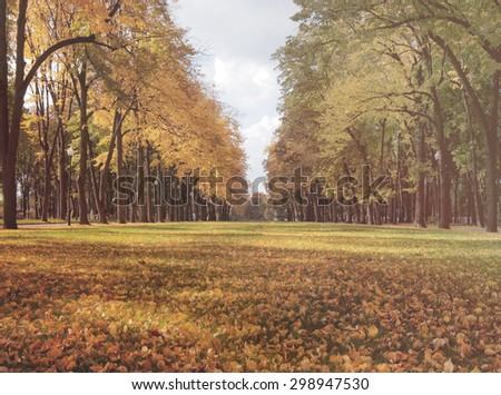Beautiful  romantic alley in a park with colorful trees, autumn landscape, natural background