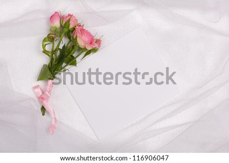Beautiful rose and card for your text on a background white veil