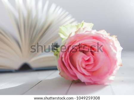 Beautiful rose flower over open book on white wooden background, romantic and love concept