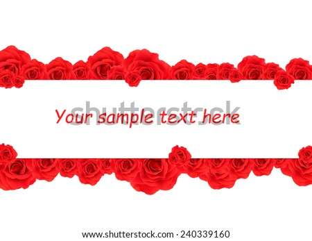Beautiful rose flowers and card with space for your text isolated on white - stock photo