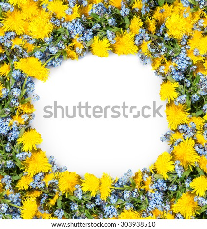 Beautiful round frame of springtime wildflower: cute cobalt Boraginaceae and vivid ocher blowballs with green leaves isolated on white backdrop with clipping mask. View close-up with space for text - stock photo