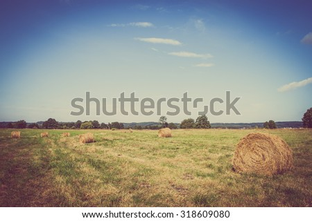 Beautiful rural landscape showing hay bales on meadow in summer at harvest. Farmland and agriculture in Poland. - stock photo