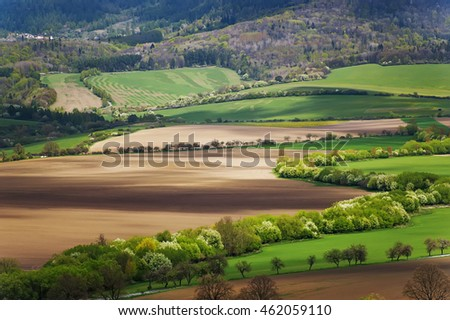 beautiful rural landscape with trees and  mountains on horizon