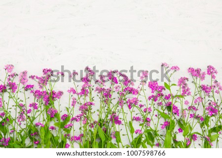 Beautiful Rustic Floral Background With Copy Space Arrangement Of Small Pink Wild Flowers On White
