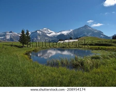 Beautiful Saanenland, Switzerland - stock photo