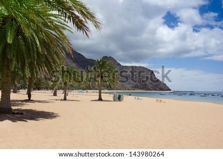 beautiful sand beach with palm trees on Tenerife - stock photo