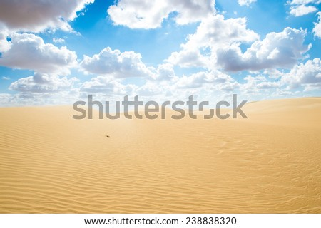 Beautiful sand dunes in the  Sahara Desert, Egypt - stock photo