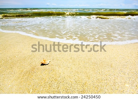 Beautiful sandy beach against blue sky and crystal blue water
