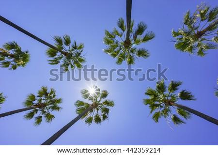 Beautiful scene around Rainbow Harbor, Long Beach, California, U.S.A. - stock photo
