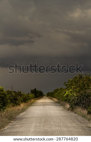 Beautiful scene of the Florida Everglades Landscape during a severe summer storm - stock photo