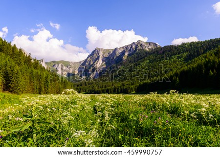 Beautiful scenery of the trail in Tatra mountains, Poland