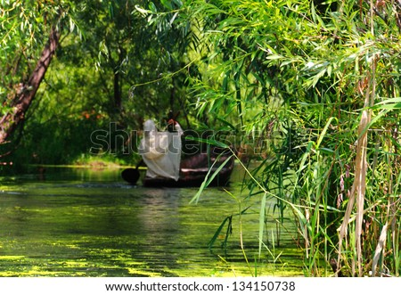 Beautiful scenic view in green tones - Indian woman in white shawl sitting in the boat on the Dal Lake full of foliage in Srinagar, Jammu & Kashmir, Northern India - picture with tilt shift effect - stock photo