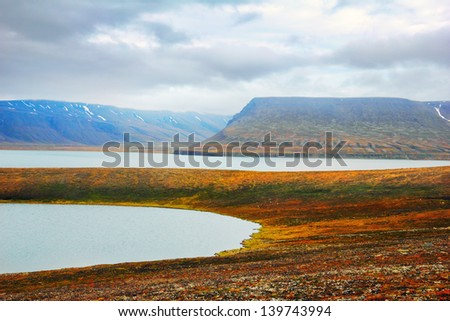 Beautiful scenic view of glacial lake, field covered with colorful moss and distant mountain range against the background of dramatic grey sky in Spitsbergen (Svalbard island), Norway - stock photo