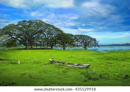 Beautiful scenic view of the Tissa Wewa lake - few trees, bright green duckweed and old traditional wooden boat against the background of cloudy sky in Tissamaharama, Sri Lanka island, South Asia - stock photo
