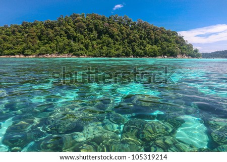Beautiful sea and coral at tropical island, Koh Lipe, Andaman sea, Thailand