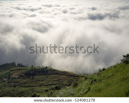 Beautiful sea of fog, landscape