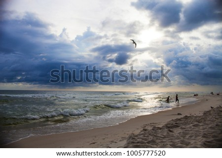 Beautiful seascape of overcast sky and sea waves on resort beach, bird flying over water