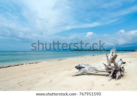 Beautiful secluded beach of Gili Trawangan, tropical island off the coast of Bali, Indonesia, with turquoise water, driftwood and golden sand