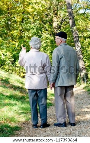 Beautiful senior couple walking in the park - stock photo
