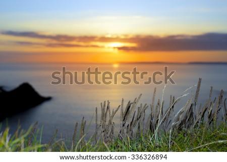 beautiful serene sunset over loop head with the wild tall grass on the wild atlantic way in ireland - stock photo