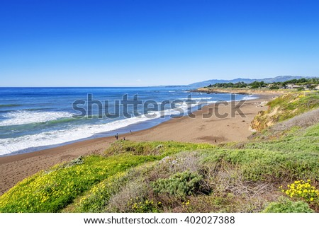 Beautiful shimmering blue sea & white water waves crashing on Moonstone Beach, while people are enjoying the sun, sand, & water, with beautiful yellow flowers in the foreground, near Cambria, CA. - stock photo