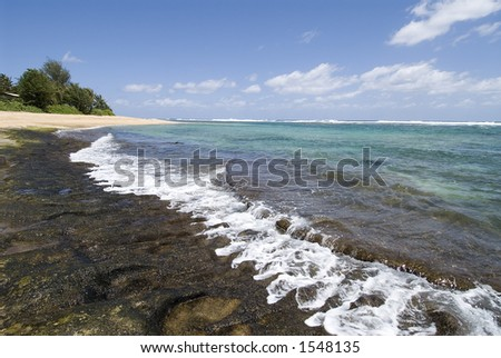 beautiful shoreline in Kauai,rocky reef and waves