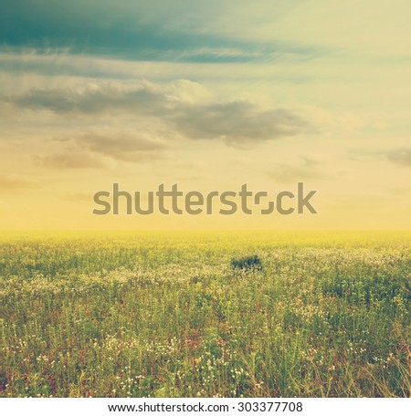 beautiful sky and green fields, retro filtered, instagram style - stock photo