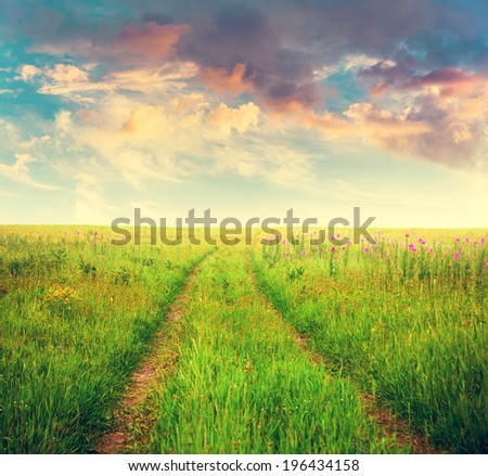 beautiful sky and sunset summer fields, fantasy background, filtered image